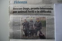 Pronto soccorso animali